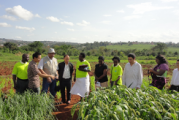 $4.6m raised to boost agro-processing in northern Uganda