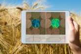 Airbus' Verde service brings new capabilities to precision farming